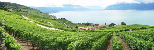 Photo Famouse vineyards in Lavaux region against Geneva lake. Switzerl