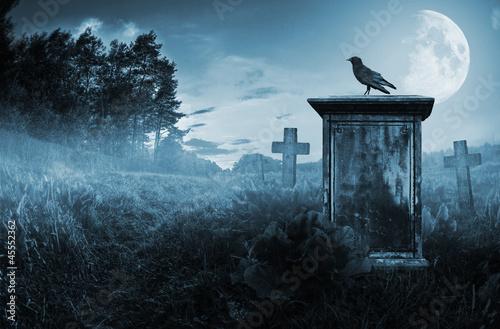 Valokuva Crow on a gravestone
