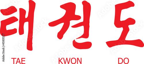 Photo Tae Kwon Do Written in Modern Korean Hangul Script with English