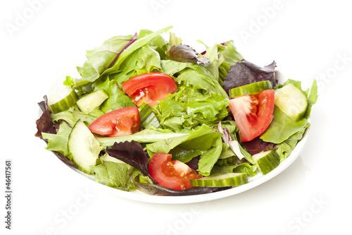 Fresh Green Organic Garden Salad