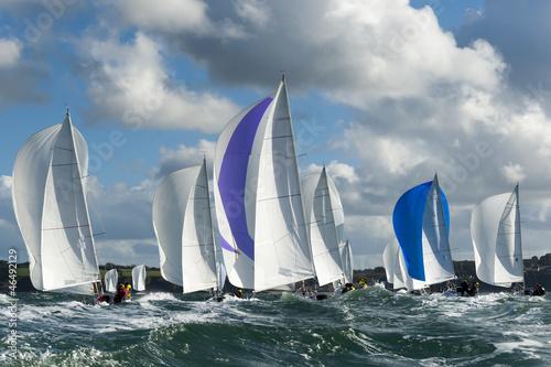 Obraz na plátně group yacht at regatta