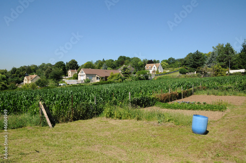 hamlet of Vaux les Huguenots in Aubergenville Fototapet