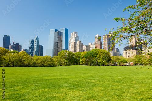 Canvas-taulu Central park, New York
