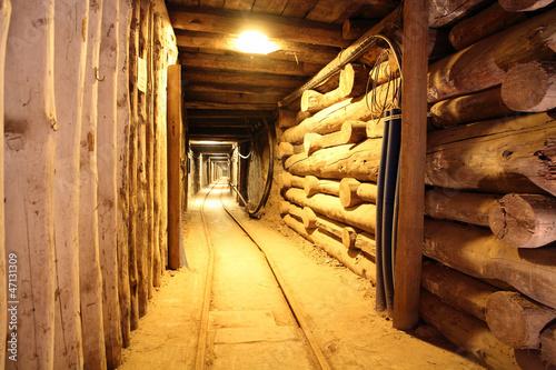 Fototapeta premium Wieliczka Salt Mine Poland