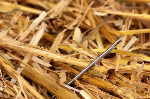 Tablou Canvas Needle in a haystack close-up