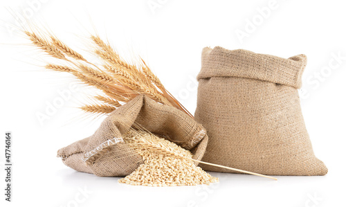 Fotografie, Obraz Wheat ears and sack of wheat grains isolated