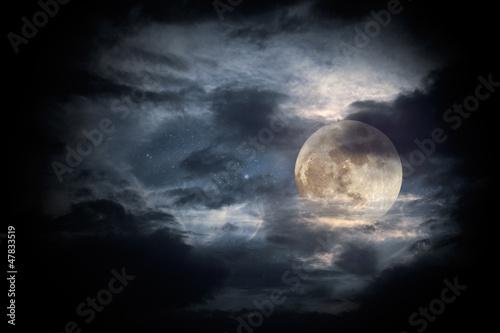 Canvastavla Full moon night