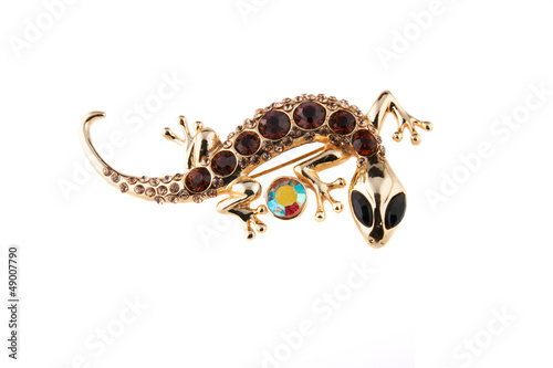 Photographie brooch salamander