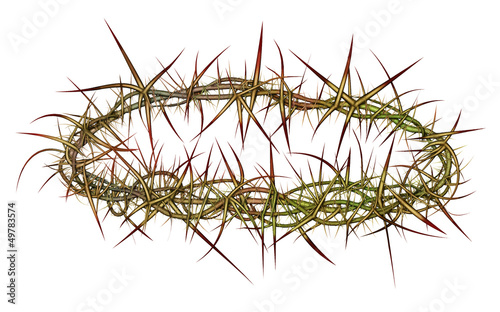 Foto Crown of Thorns