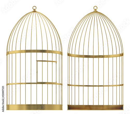 Fotografie, Tablou birdcage on a white background