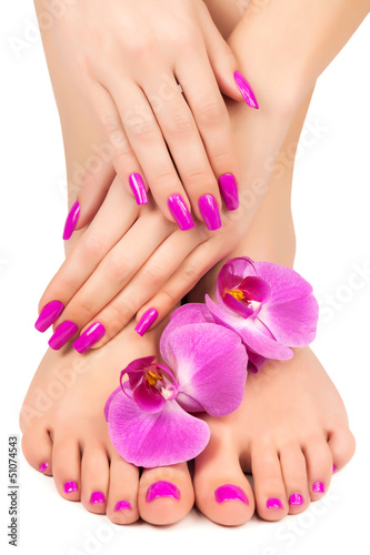 Fotografering pink manicure and pedicure with a orchid flower