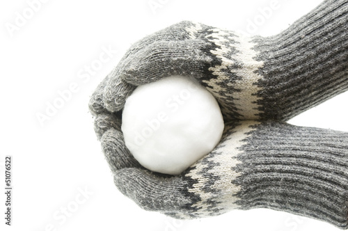 Canvas Print Snowball in palms