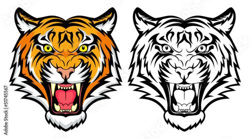 Photo Tiger anger