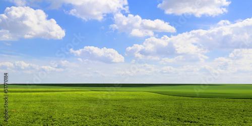 Canvas Print Panoramique Plaine et Ciel