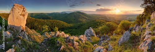 Cuadros en Lienzo Green nature panorama with sun
