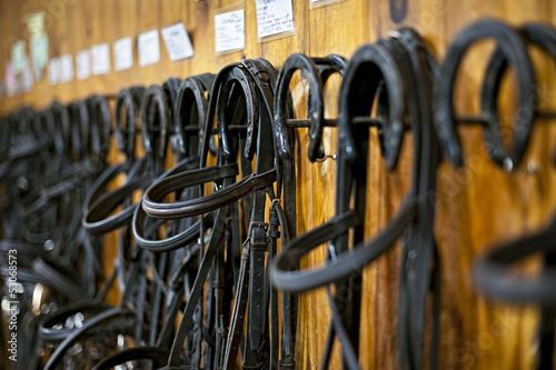 Tablou Canvas Horse bridles hanging in stable