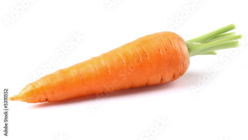 Photo One young carrot