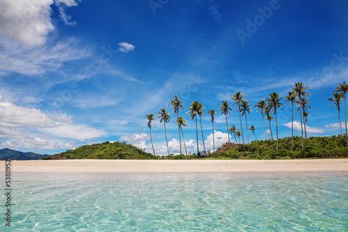 Fotografia Palm and tropical beach
