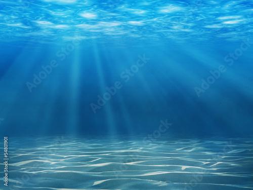 Obraz na plátně Tranquil underwater scene with copy space