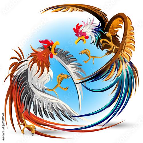 Wallpaper Mural Cockfight Fighting Cocks