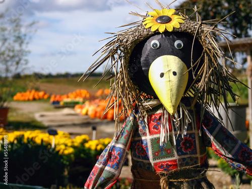 Obraz na płótnie Scarecrow with Pumkins
