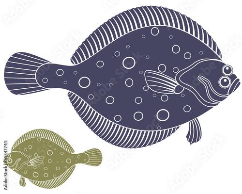 Flounder Fototapet