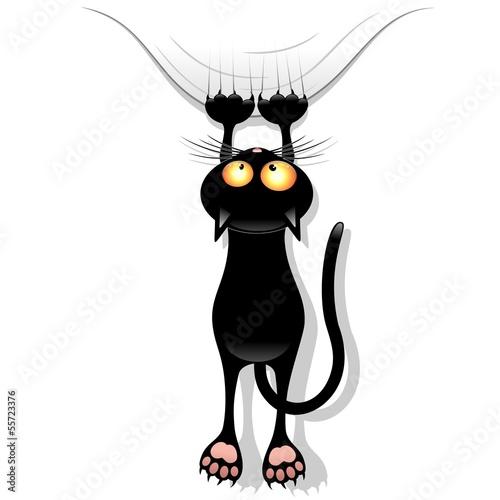 Cat Cartoon Scratching Curtain-Gatto Buffo Strappa Tenda #55723376