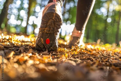 Fotografie, Tablou Hiking concept