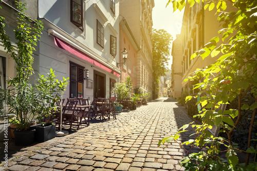 Alley at Spittelberg - Old town, Vienna, Austria #56071321