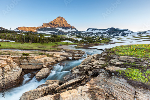 Fotografie, Obraz Beautiful nature at Logan Pass, Glacier National Park, MT