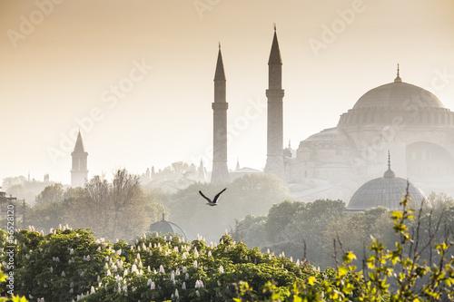 Canvas Print Sultanahmet Camii / Blue Mosque, Istanbul, Turkey