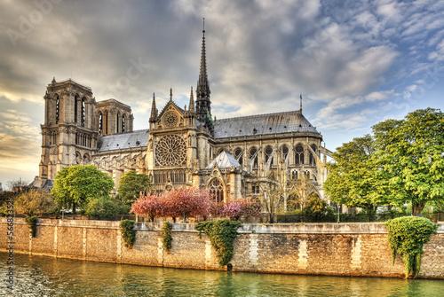 Notre Dame de Paris Cathedral Fototapeta