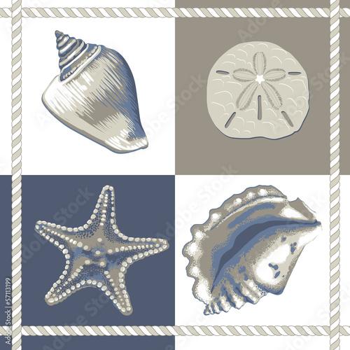 Photographie Conchas e estrelas Azul