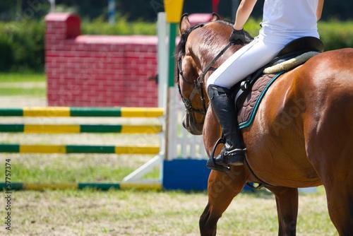 Slika na platnu Riding sport