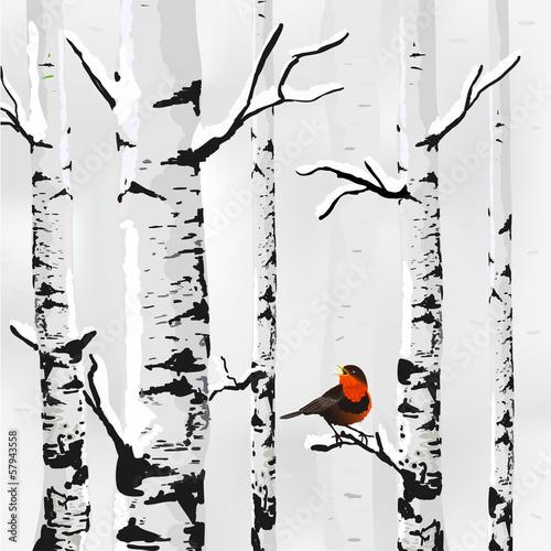 Fototapeta Rysunek brzóz z kolorowym ptakiem XL