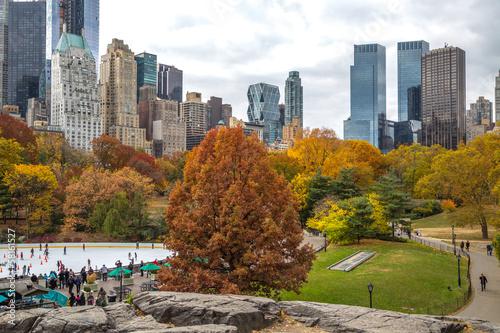Obraz na plátne Autumn leaves foliage in New York City Central Park