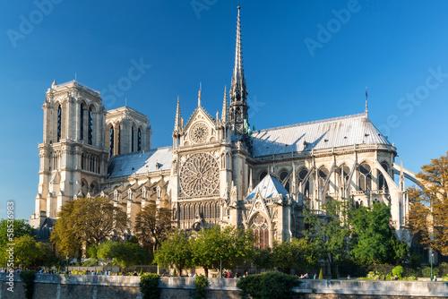 Fotografie, Obraz Famous Cathedral of Notre Dame de Paris in summer, France