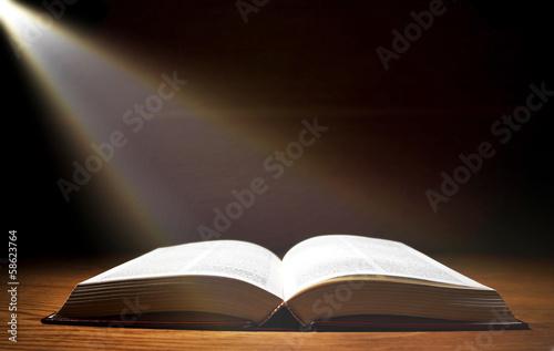 Cuadros en Lienzo Book