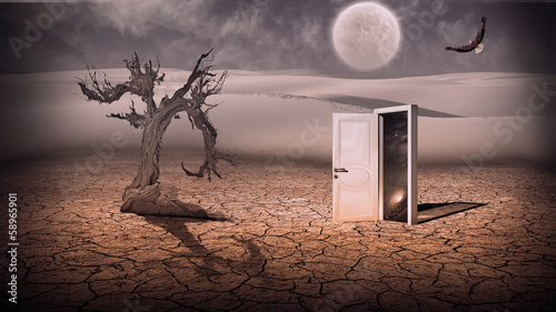 Fotografie, Obraz Open doorway show a somehow semitransparent space scene in stran