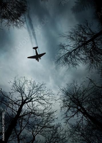 Wallpaper Mural Plane World War II era in flight