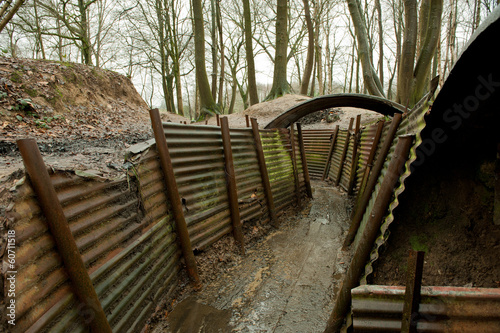 Wallpaper Mural WW1 Trenches, Sanctuary Wood, Ypres, Belgium