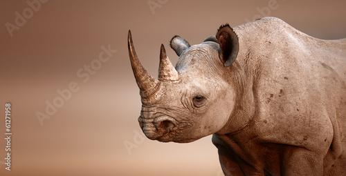 Fotografia Black Rhinoceros portrait