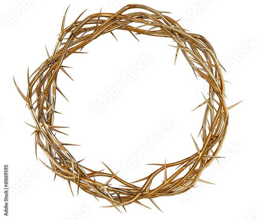Fotografia Golden Crown Of Thorns