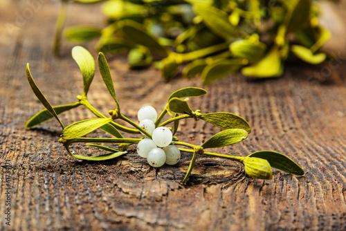 Carta da parati mistletoe branch on a wooden background