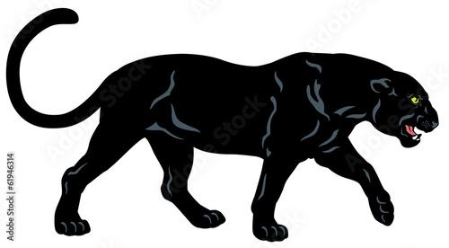 Fototapeta premium black panther