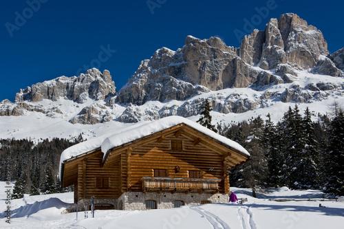 Chalet in the Dolomiti #61992598
