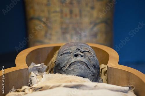 Fotografiet Egyptian mummy