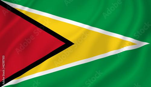 Guyana flag #62187100