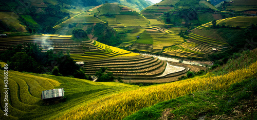 Fotografia Rice fields on terraced in sunset at Mu Cang Chai, Vietnam