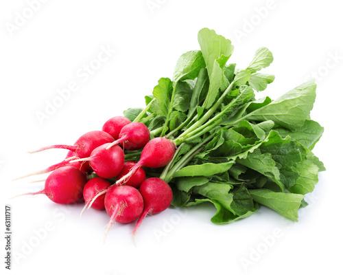 red radish